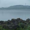 テトラポッドと霧