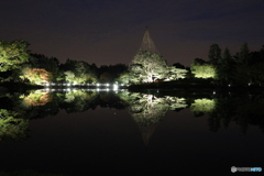 秋の夜散歩 日本庭園にて
