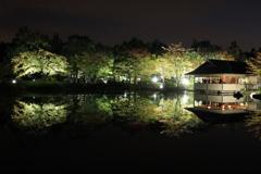 秋の夜散歩 日本庭園にて2
