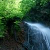 初夏の夢想滝