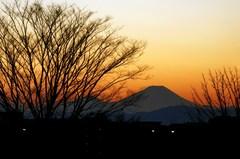 遠く見える富士