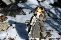 名残雪と梓月