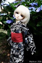 紫陽花と瑠月2014 side B