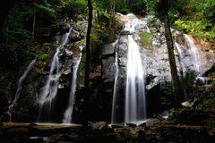 金引の滝2