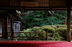 京都年の瀬散歩-凝縮-