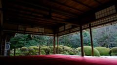 京都年の瀬散歩-伏して臨む-