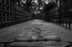 京都年の瀬散歩-解脱への路-