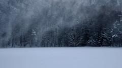 風雪駆ける