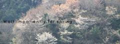 春を待ちわびて(take2)