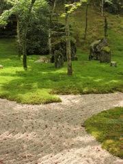 光明禅寺の落ち葉