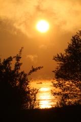 生まれたての太陽