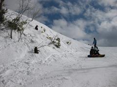 雪山のお猿さん&仲間たち