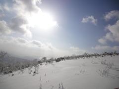 北国の太陽