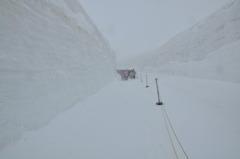 立山アルペンルート 雪の大谷ウォーク
