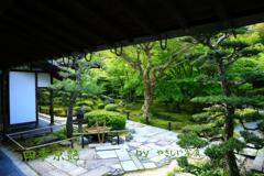 四季京艶 薫緑の候 十