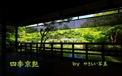 四季京艶 薫緑の候 十三