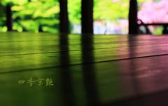 四季京艶 若菜色と撫子色