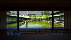 四季京艶 薫緑の候 十二