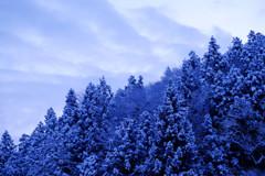 大寒波の朝