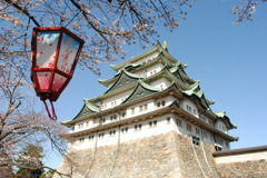 名古屋城 さくらまつり