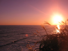 natural sunset@shizuoka