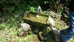 精進ガ滝の沢水