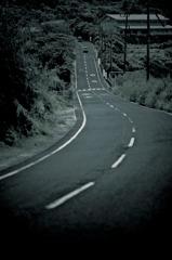 屋久島の道
