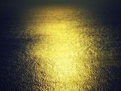 黄金の波動#2