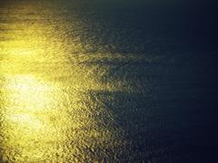 黄金の波動#1