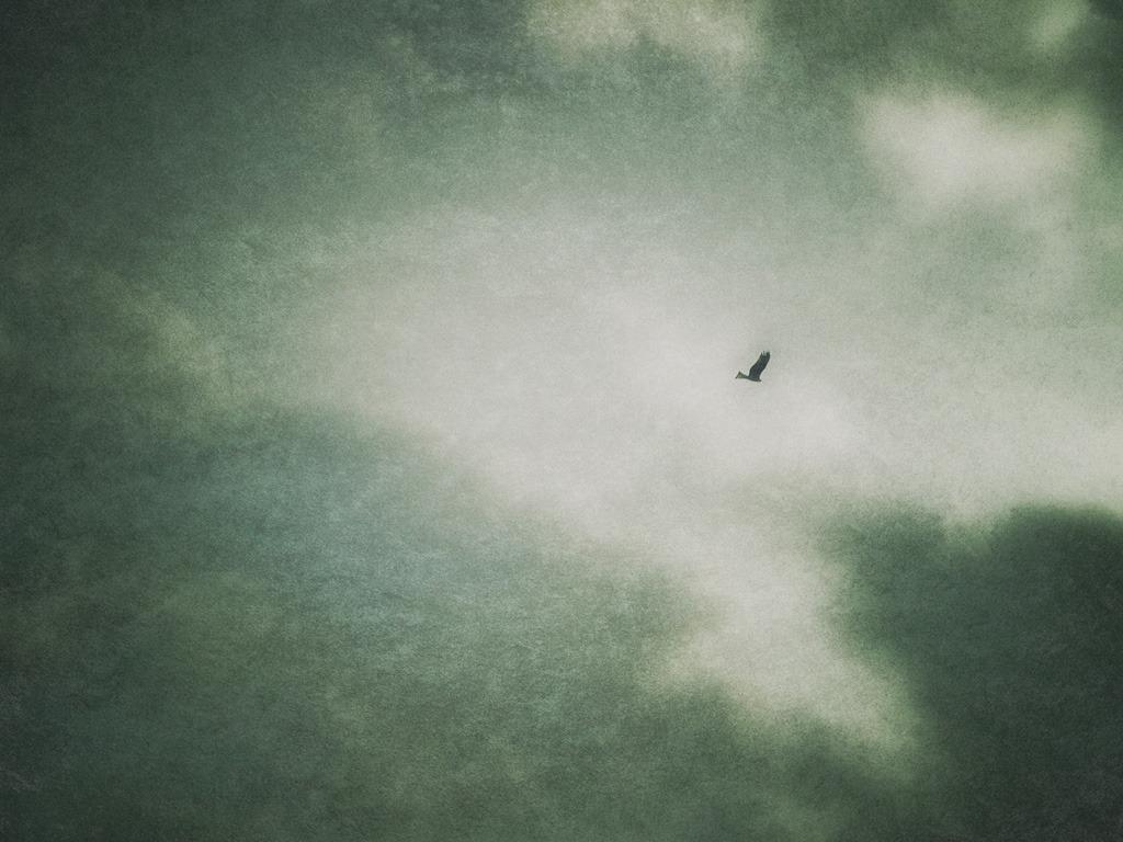 孤独な飛行