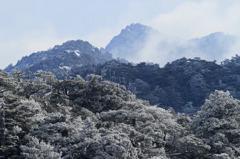 屋久島の山並み