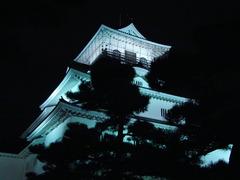 富山城のライトアップ