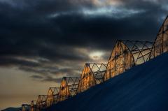 朝日の中のピラミッド達
