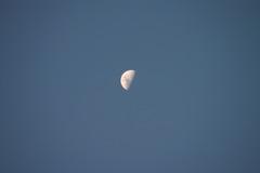 Down under half moon