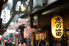 "The memorable ""YOKOCHO"""
