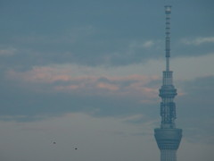 Blue SkyTree