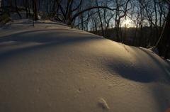 orenge snow