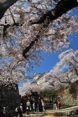 津山鶴山公園