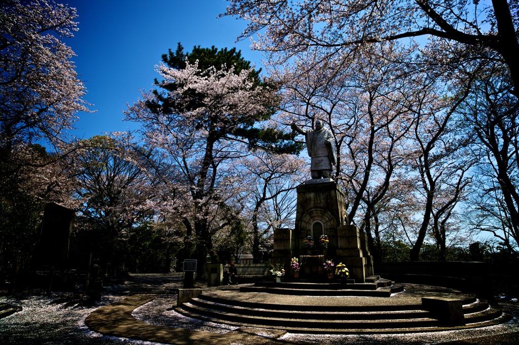 春 東京 06