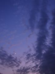ほっそーい「お月」(DSC05160A)