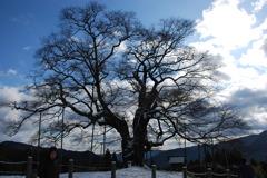 12月19日 吹雪の蒜山へ 009