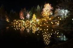 光のページェント in 泉パークタウン