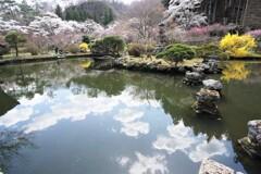 春の庭園散歩