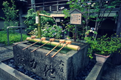 『矢田寺2』