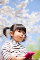 桜が待ち遠しいなー