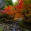 大寧寺 秋色に染まる風景