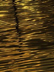 黄金色に輝く水面