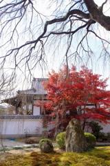 春と秋の主役