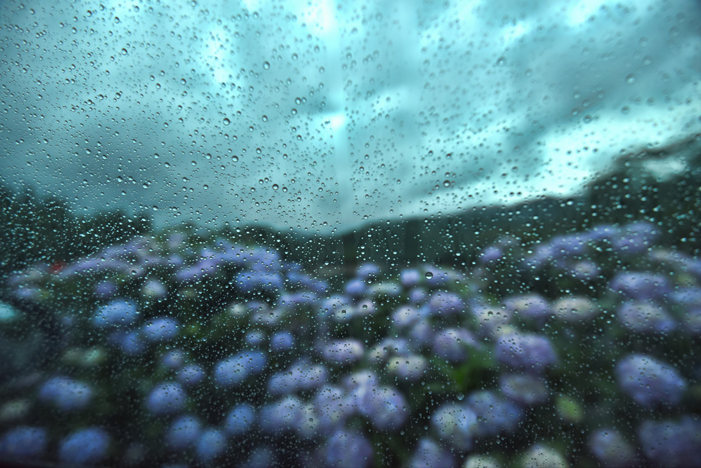 梅雨の車窓風景