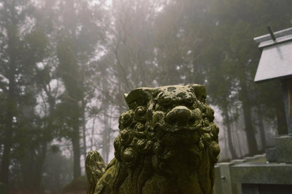 霧の狛さん